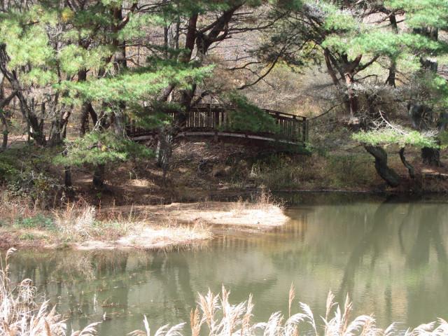 korea-southern-0394