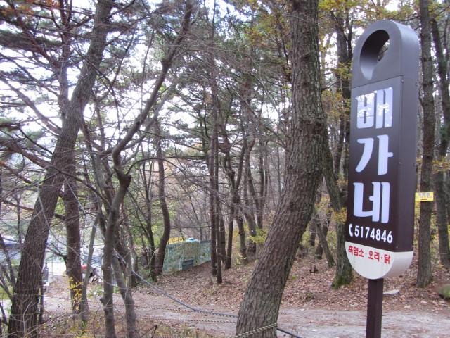 korea-southern-0397