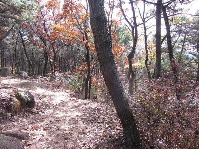 korea-southern-0468