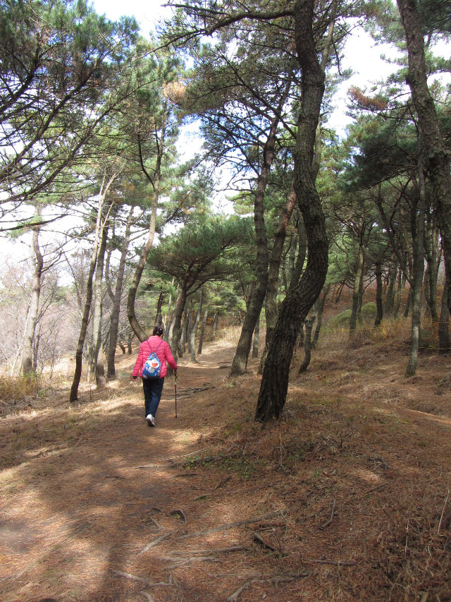 korea-southern-0471