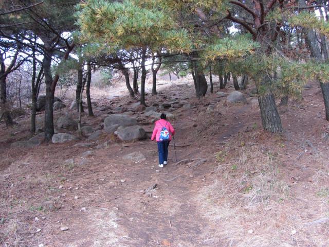 korea-southern-0480