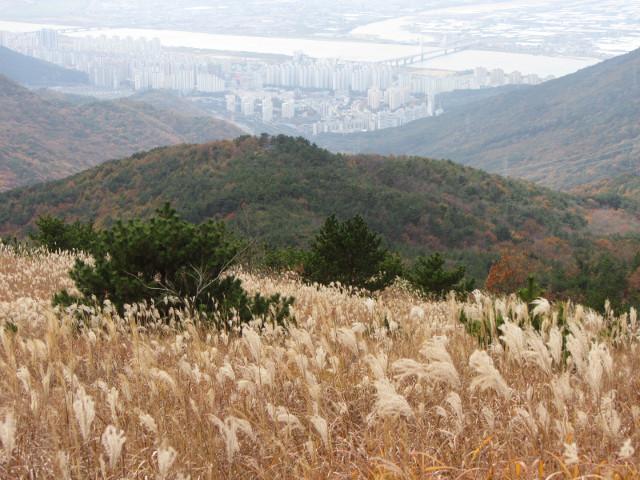 korea-southern-0566