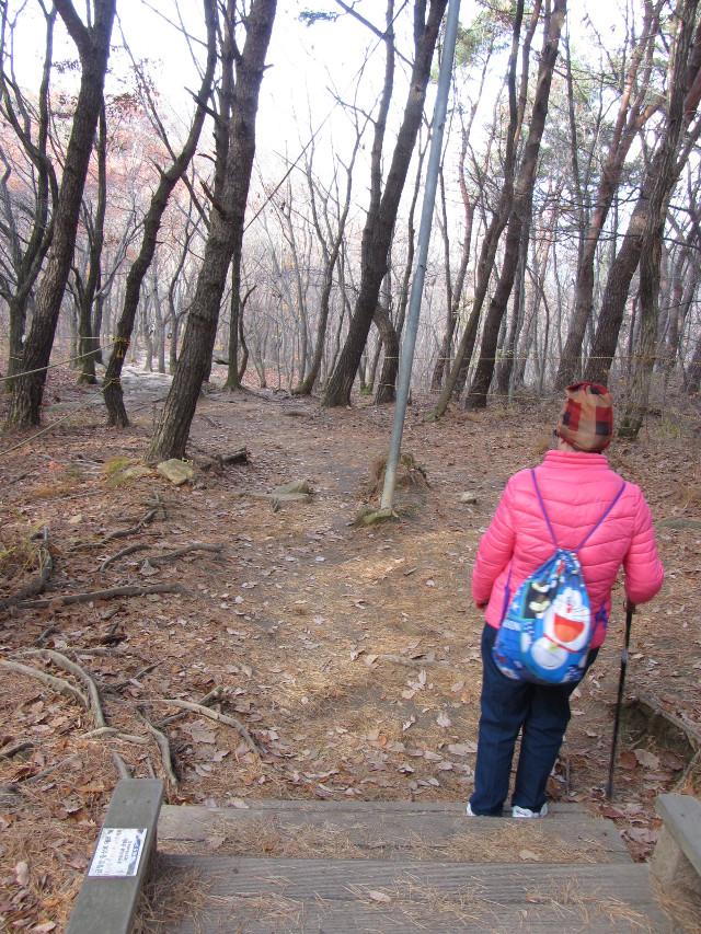 korea-southern-0702