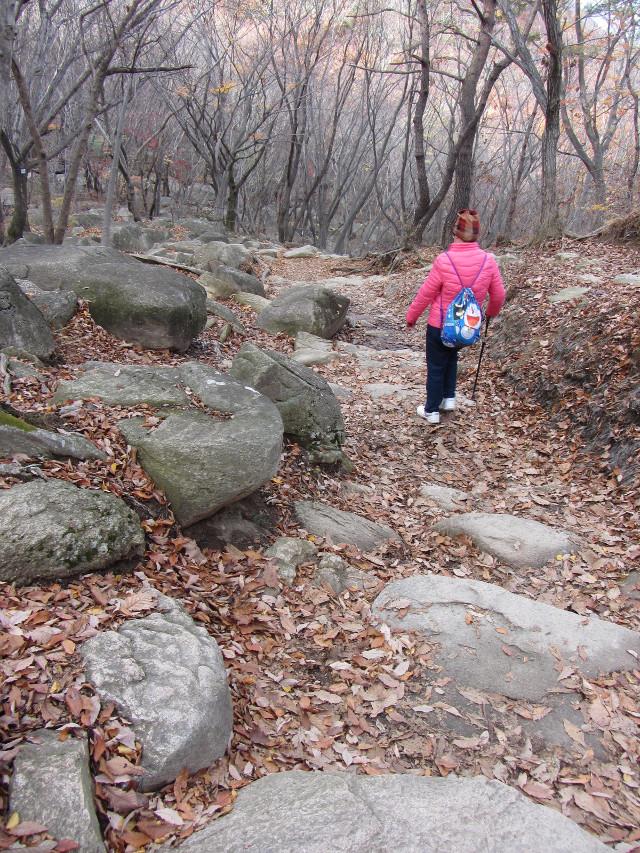 korea-southern-0707