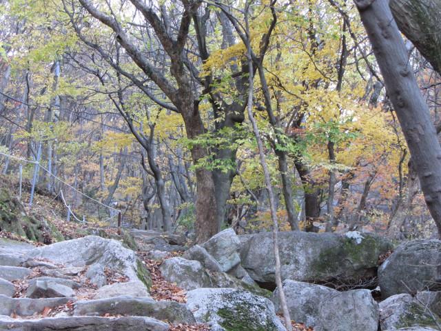 korea-southern-0732