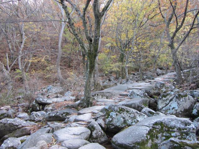 korea-southern-0750