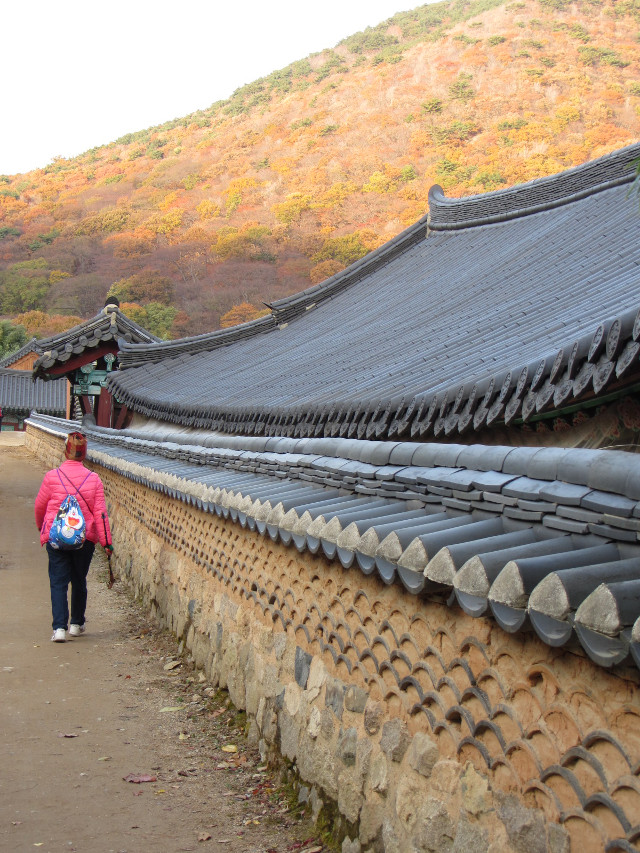 korea-southern-0774