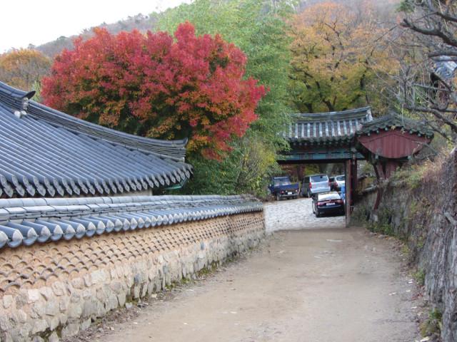korea-southern-0779