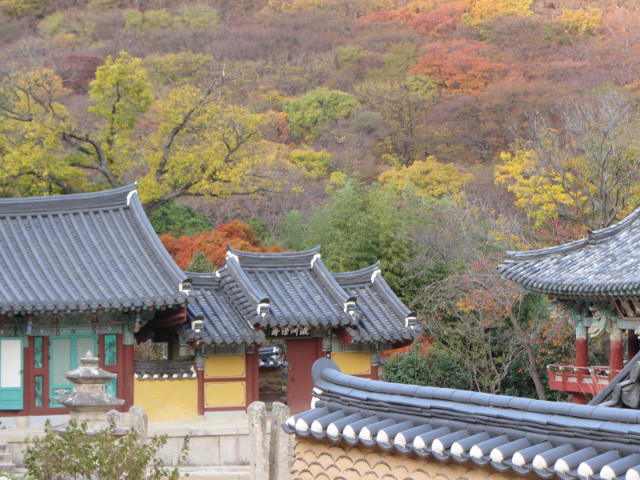 korea-southern-0785