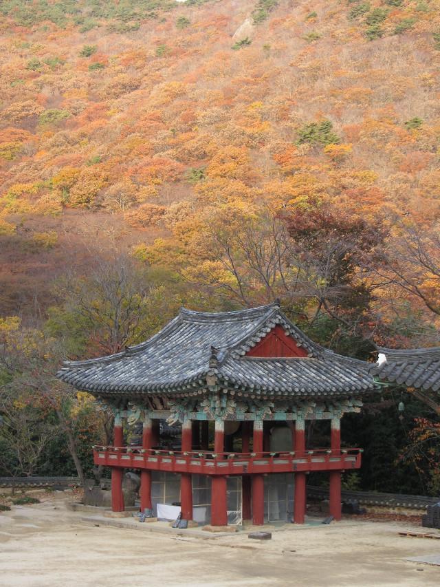 korea-southern-0786
