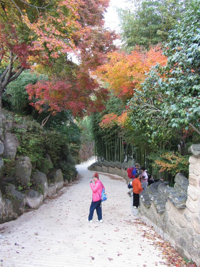 korea-southern-0792