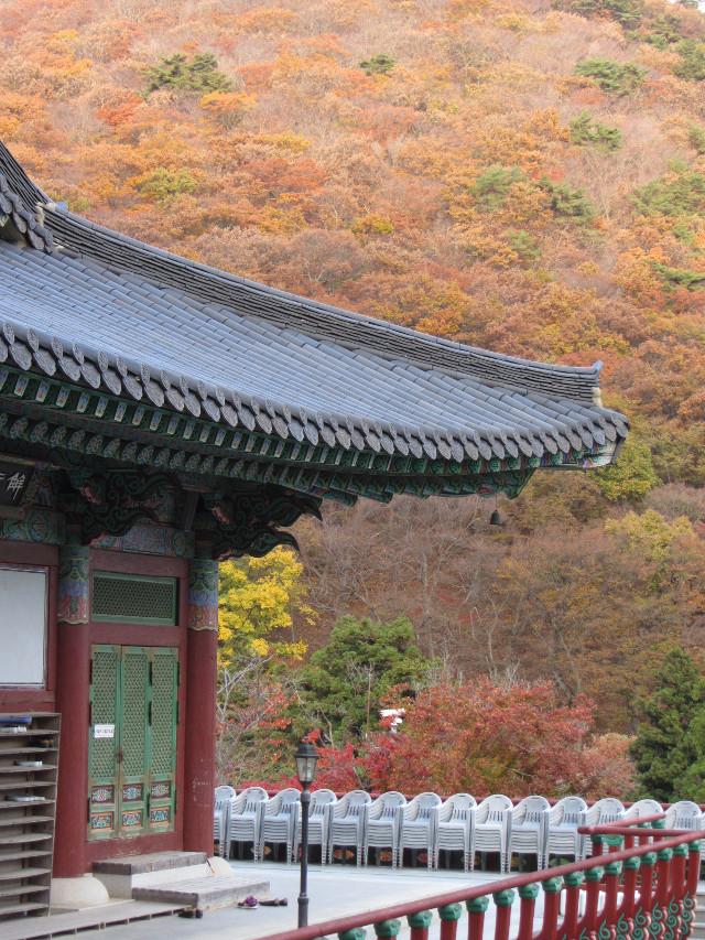 korea-southern-0797