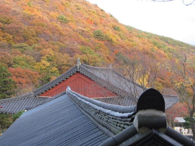 korea-southern-0798