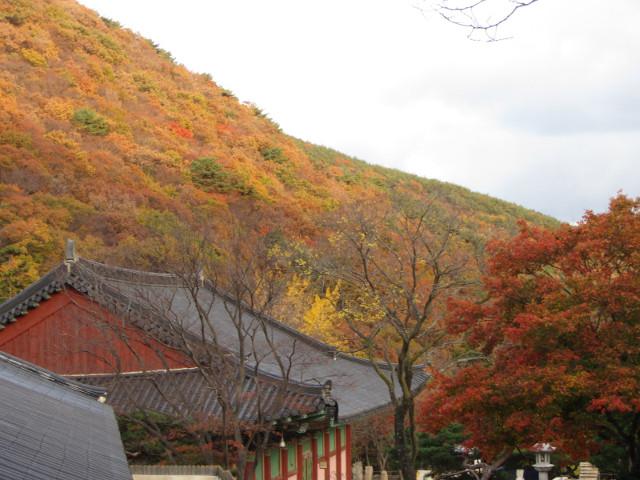 korea-southern-0799