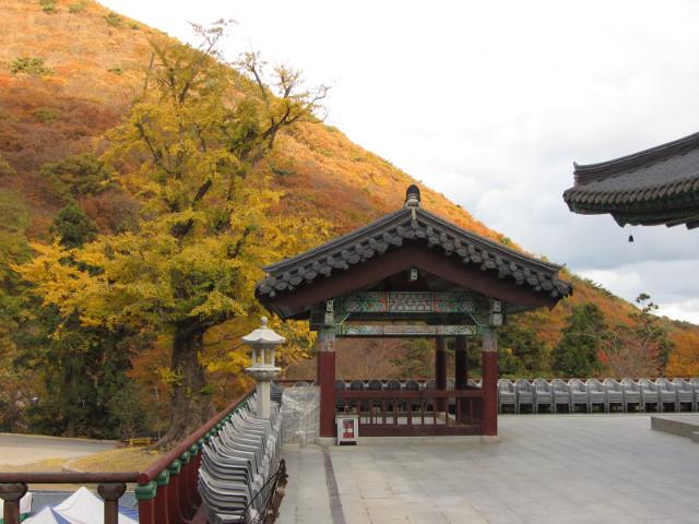 korea-southern-0806
