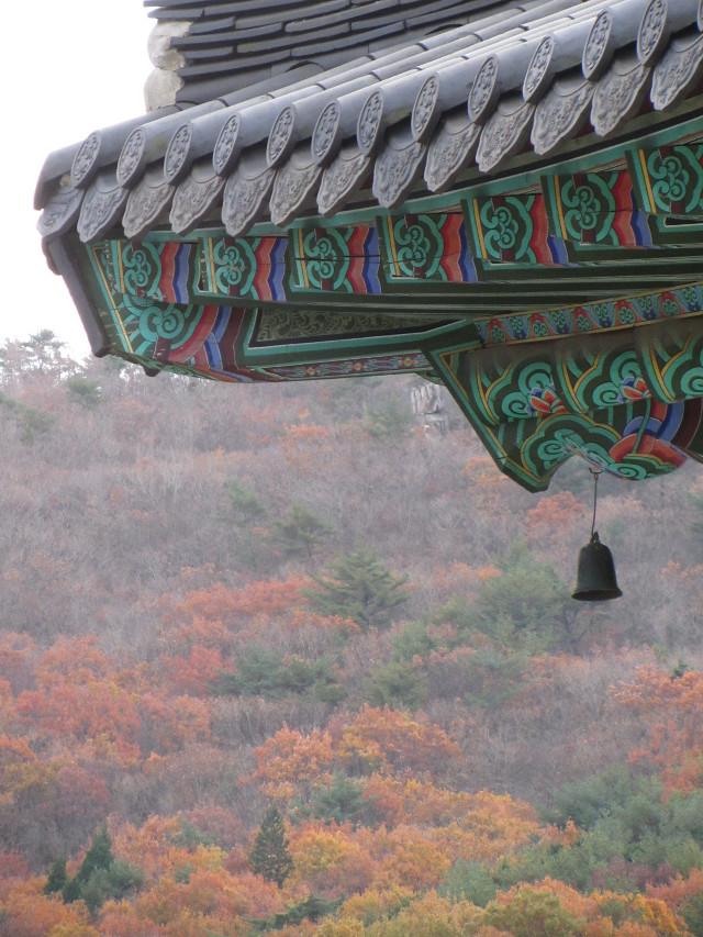 korea-southern-0812