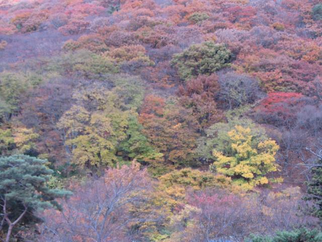 korea-southern-0813
