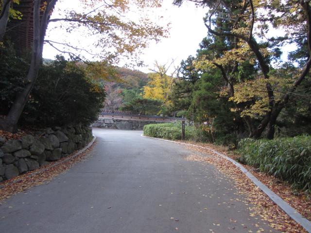 korea-southern-0822