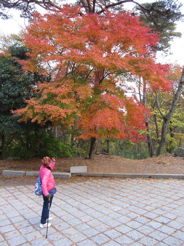 korea-southern-0827