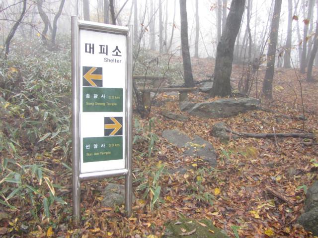 korea-southern-9418