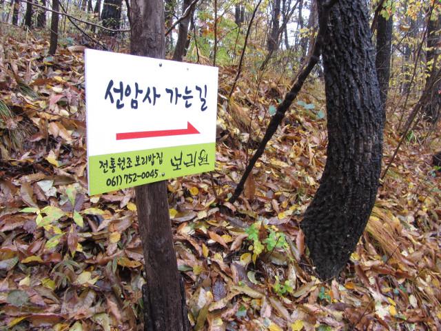 korea-southern-9437