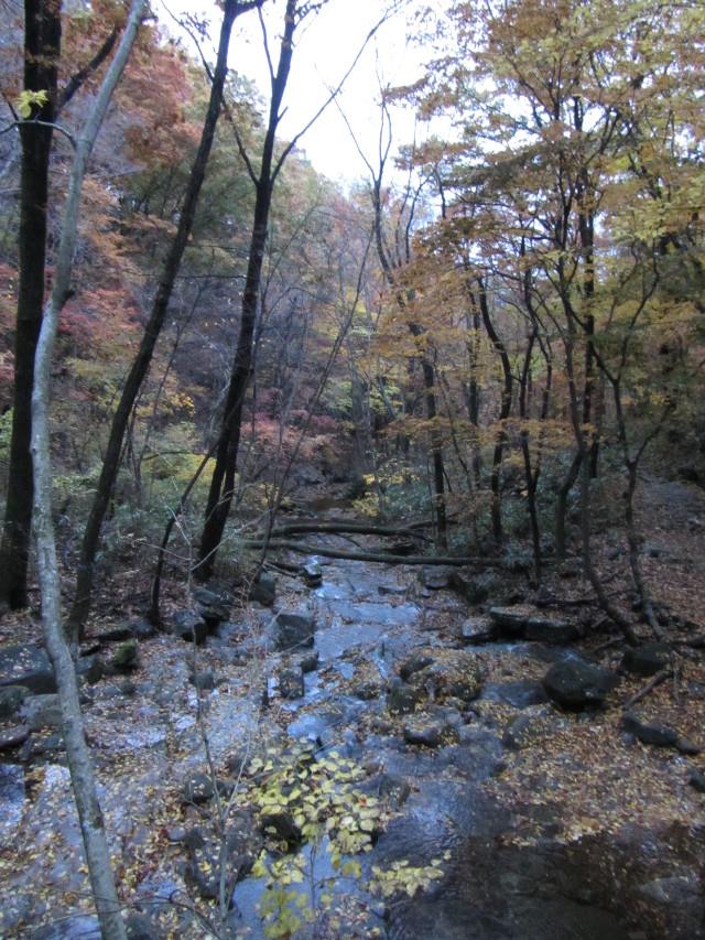 korea-southern-9480