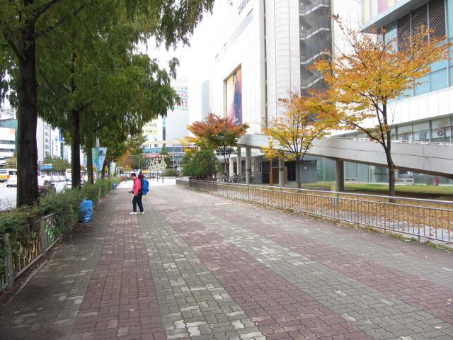 korea-southern-9528