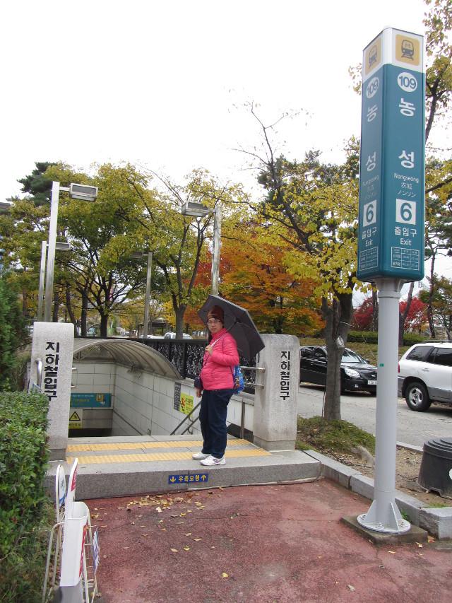 korea-southern-9553