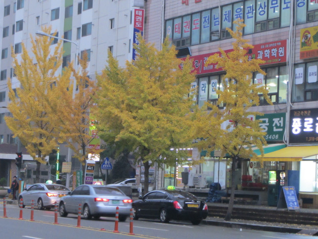 korea-southern-9656