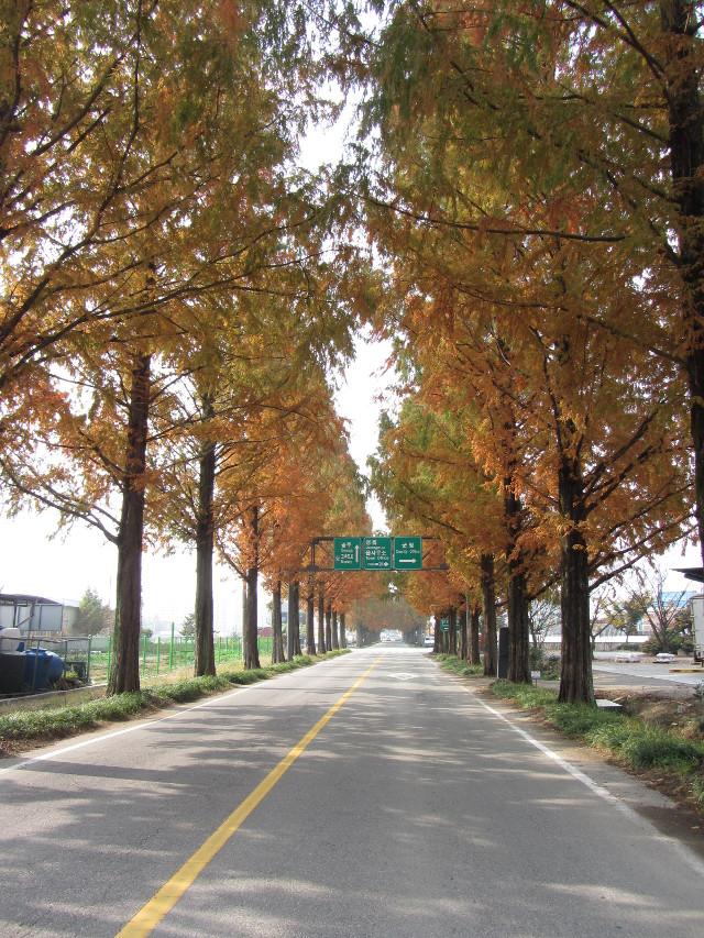 korea-southern-9729