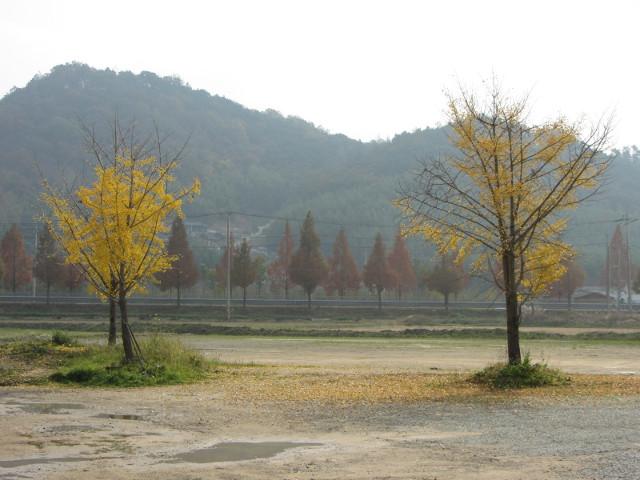 korea-southern-9741