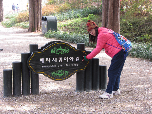 korea-southern-9789