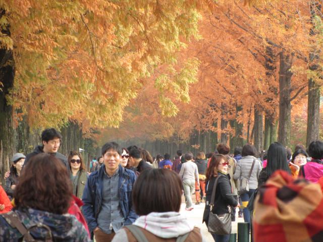 korea-southern-9792