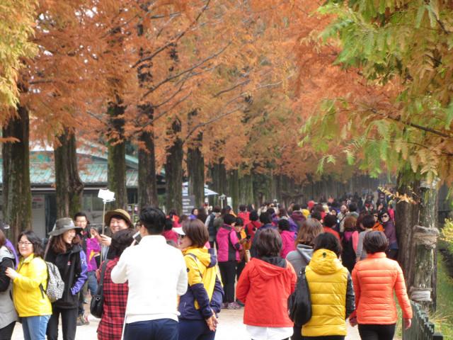 korea-southern-9796