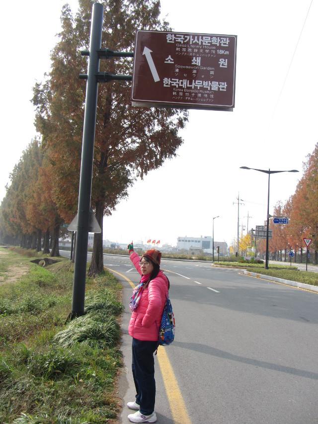 korea-southern-9877