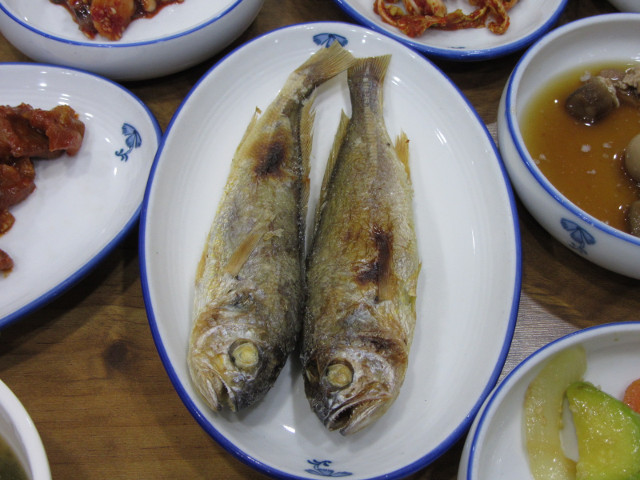 korea-southern-9892