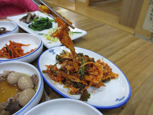 korea-southern-9894