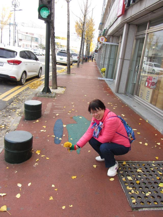 korea-southern-9932