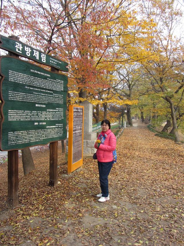korea-southern-9952