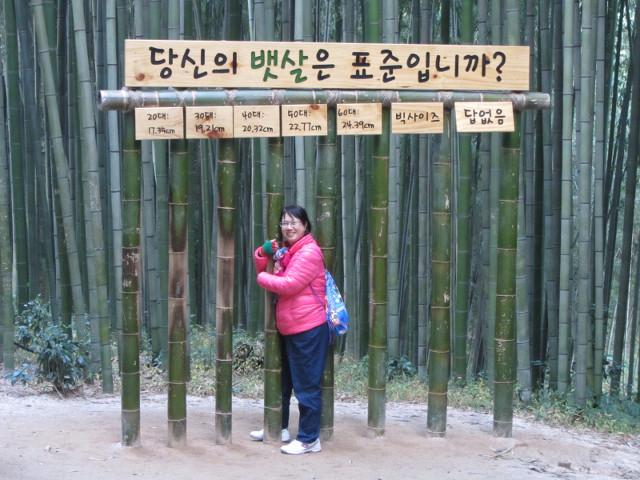 korea-southern-9995