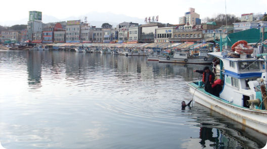deapo-harbour-banner