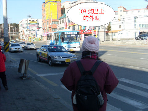 gangneung-jeongdongjin-bus-info-1