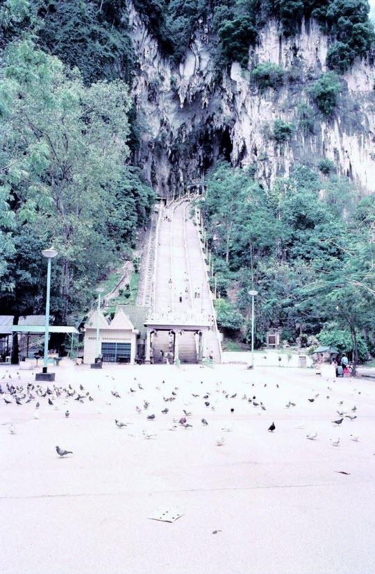 馬來西亞吉隆坡 黑風洞(Batu Caves)