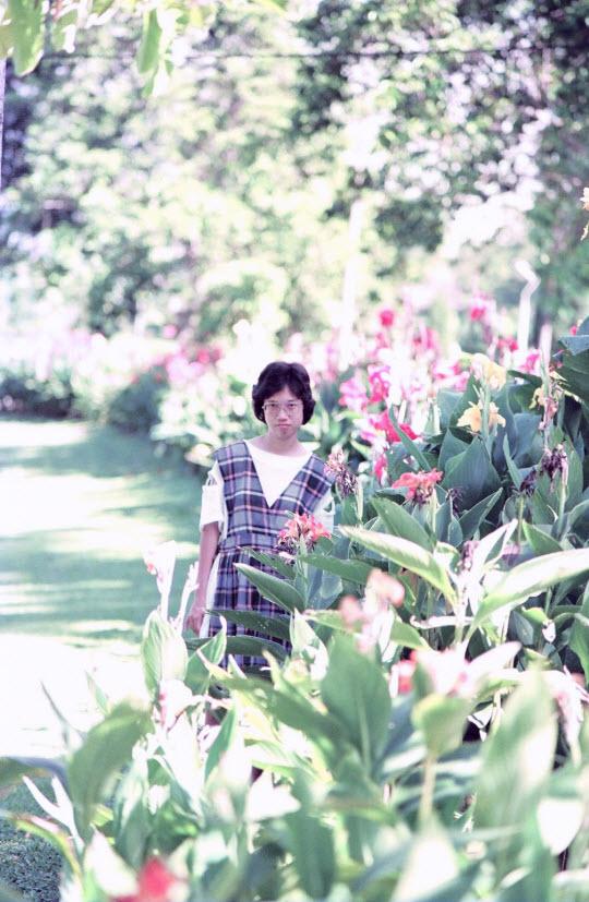馬來西亞吉隆坡湖濱公園 (Lake Gardens)