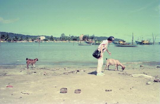馬來西亞東岸市鎮 Mersing 漁村