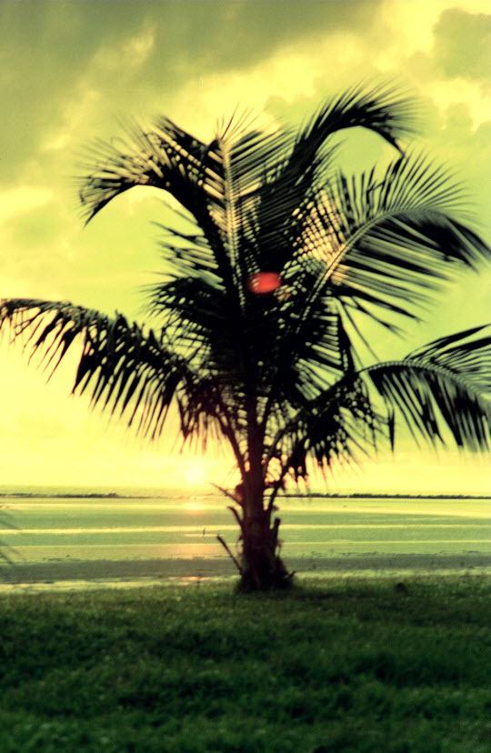 馬來西亞東岸市鎮 Mersing 日出景色
