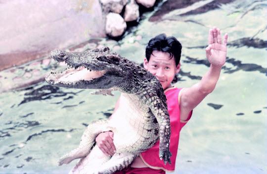 泰國北欖鱷魚湖動物園大象表演