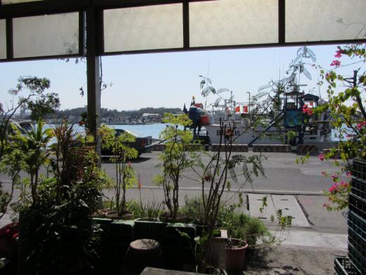 梧棲觀光漁港餐廳
