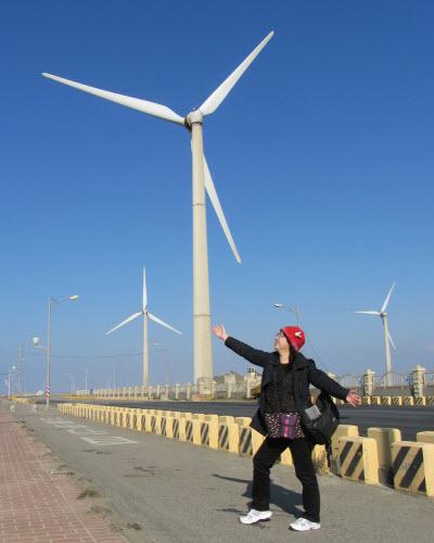 梧棲觀光漁港環港北路九號風車群