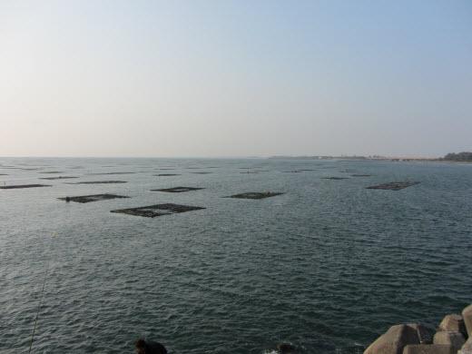 台南安平漁港防波堤 海上漁場